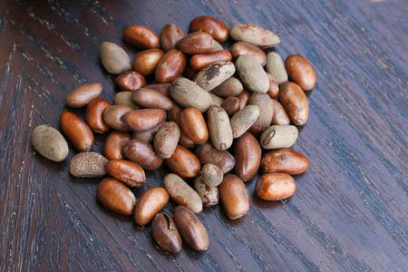 African nutmeg